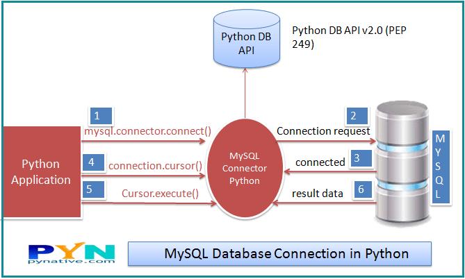 MySQL database connection in Python