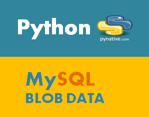 Python MySQL- Insert / Retrieve file and images as a Blob in