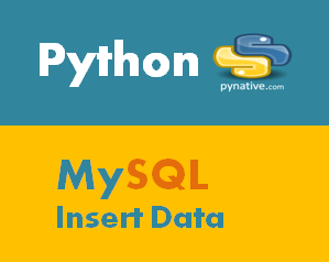Python MySQL Insert Data Into Table [Complete Guide]