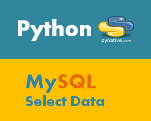 Python MySQL Select From Table [Complete Guide]