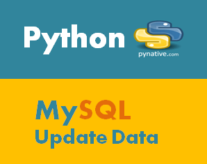 Python MySQL Update Database Table [Guide]