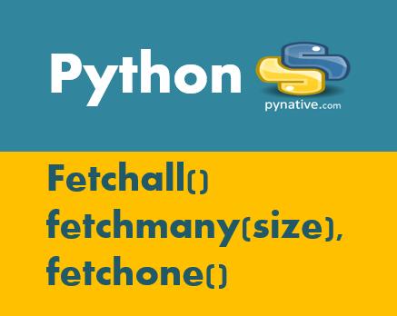 Python cursor fetchall fetchmany fetchone
