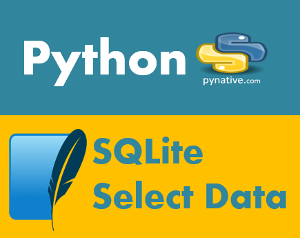 Python SQLite Select from table