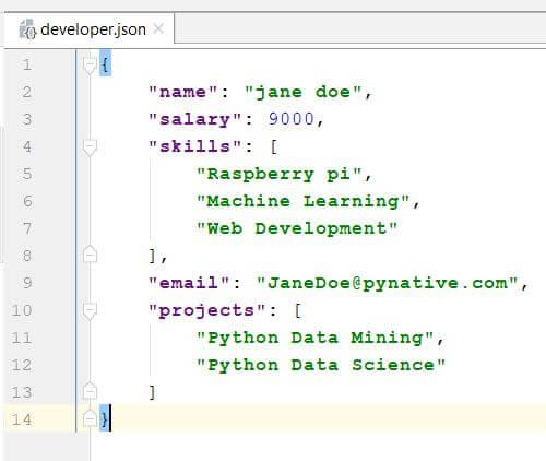 Developer JSON file
